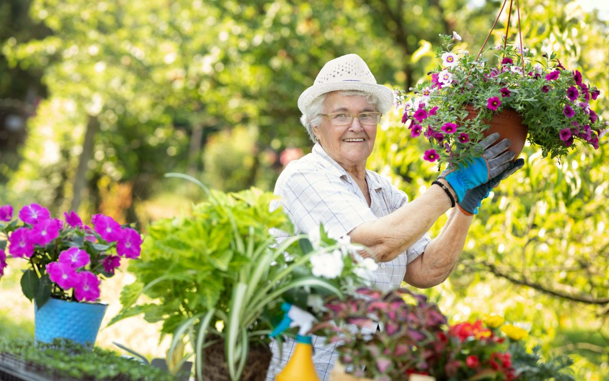 Proud senior woman smiling and holding her blooming flowers